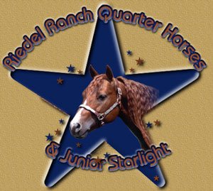 Welcome to Riedel Ranch Quarter Horses!